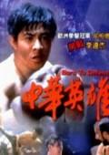 中华英雄92版