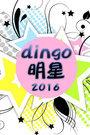 dingo 明星 2016