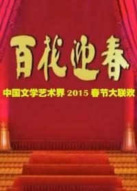 中国文学艺术界春节大联欢(综艺)