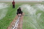 发展节水农业的广西实践
