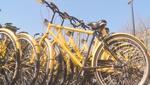 共享单车:毫厘之间的诚信考验