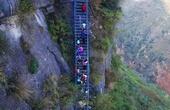 """藤梯变钢梯 """"悬崖村""""踏上致富路"""