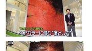 日本人把天然无添加做到了极致,你不知道的NO.1染发膏