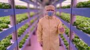 探秘全球最大植物工厂:未来上火星种植物?