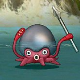 铁盔章鱼.jpg