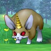 黄金兔.jpg