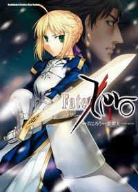 Fate zero manhua.jpg