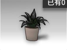 长叶盆栽.png