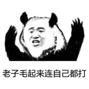 熊猫表情包2.jpg
