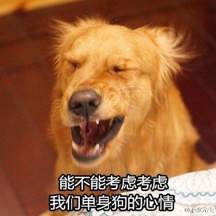 单身狗3.jpg