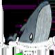 蓝鲸.png