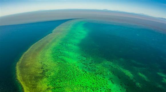 航拍澳大利亚大堡礁 黄色浑浊海水环绕岛礁