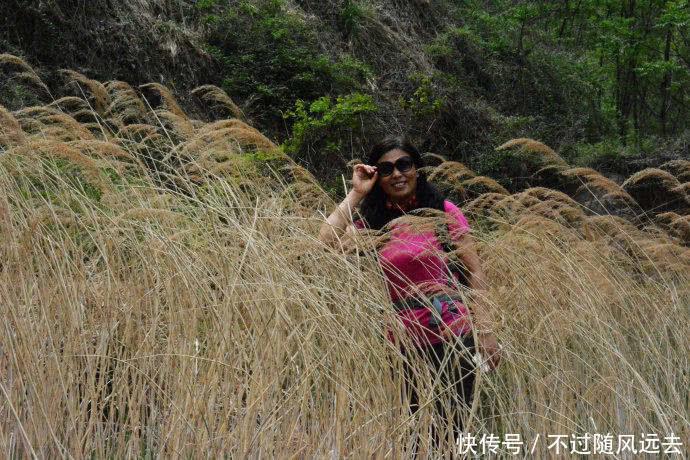 博山淋漓沟:一路情趣香南通宾馆吗小姐槐花有图片