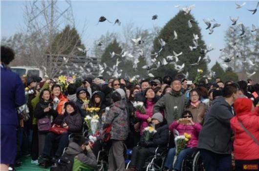 北京市骨灰撒海已超遗体火化总量2%