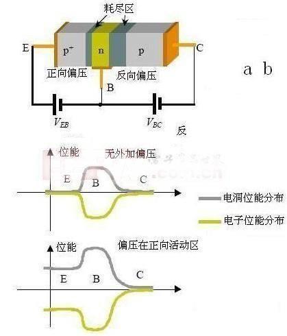 三极管具有电流放大作用,是电子电路的核心元件.