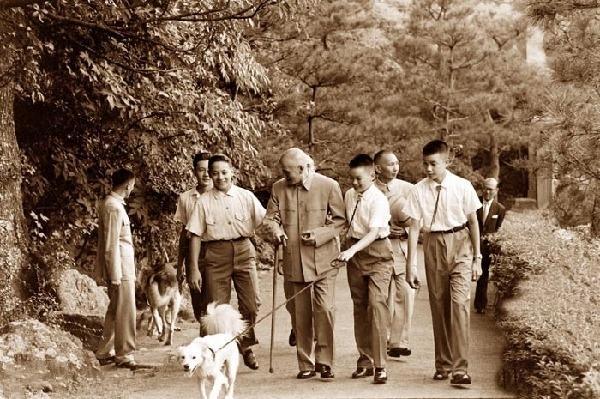 蒋介石打宋美龄:狗做了一个动作令蒋介石尴尬 - 一统江山 - 一统江山的博客