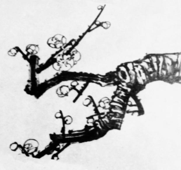 素描的梅花怎么画带图的