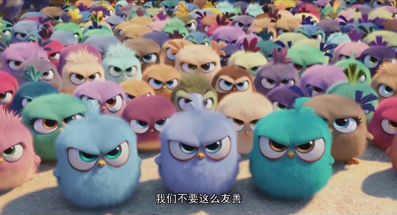 《愤怒的小鸟》电影版预告片