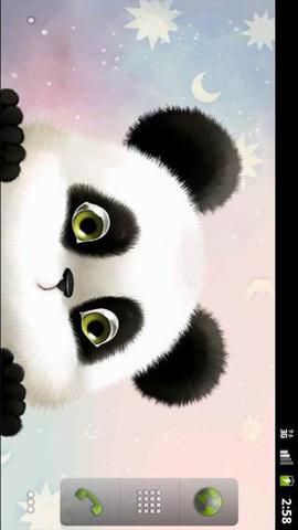 熊猫高清动态壁纸(来自:)