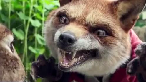 《彼得兔》最新预告片,太搞笑了