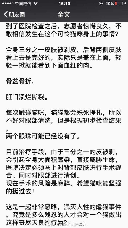 【转】北京时间      小白猫遭不明人虐待:双目被挖 皮肤撕脱 - 妙康居士 - 妙康居士~晴樵雪读的博客