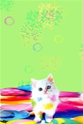 软件 聊天通讯 >可爱的小猫