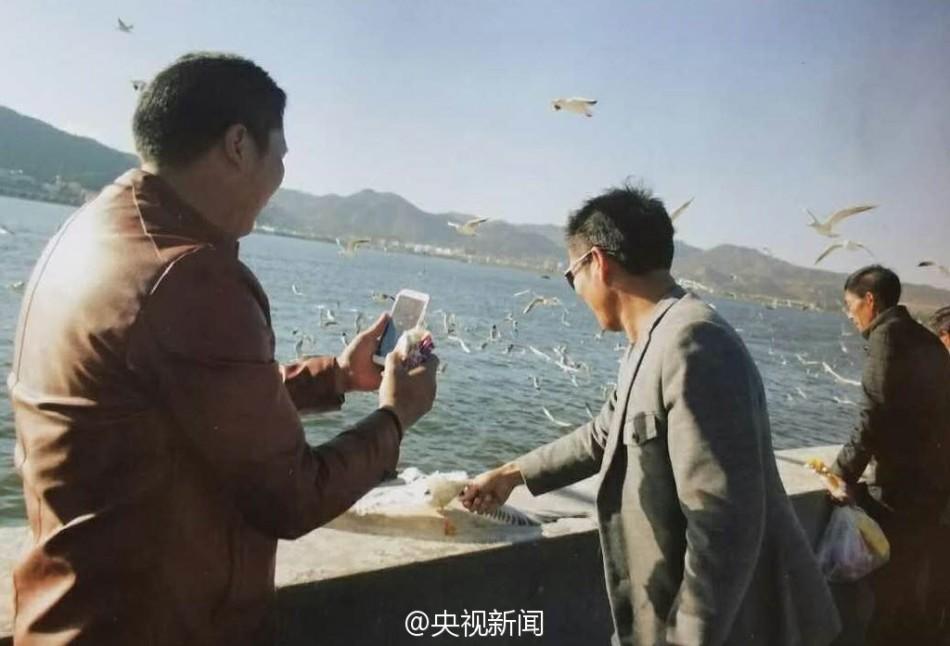 一游客在昆明海埂大坝抓海鸥拍照,被保安制止后摔断海鸥翅膀 - 梅思特 - 你拥有很多,而我,只有你。。。