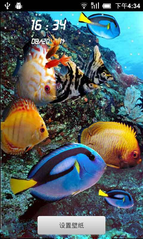海底世界动态壁纸锁屏免费下载|海底世界动态壁纸锁屏