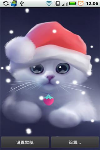 可爱猫咪动态壁纸(来自:)