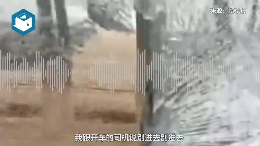 亲历者讲述老虎扑碎车窗:它边跑边张嘴,一爪子搭过来