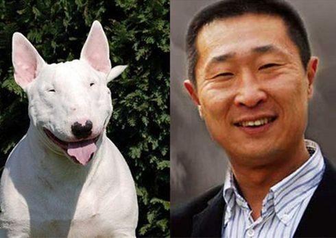 动物界也撞明星脸 林更新的最搞笑 最形象的果然是他