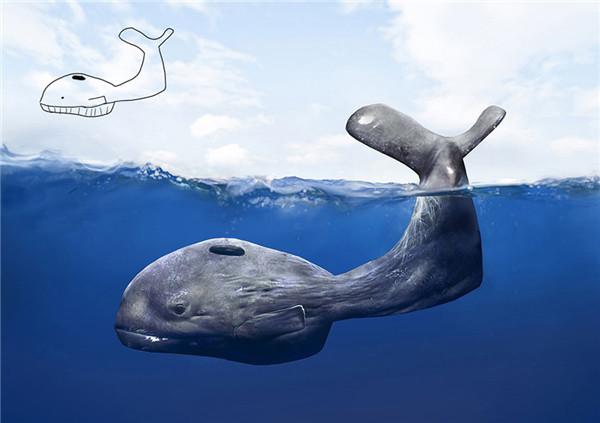 动物世界简笔画》儿童动物世界》海洋动物世界