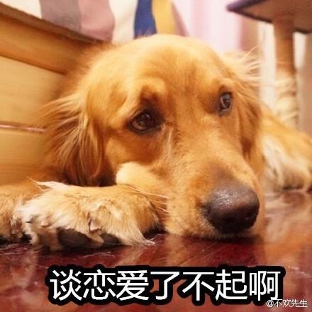 单身狗1.jpg