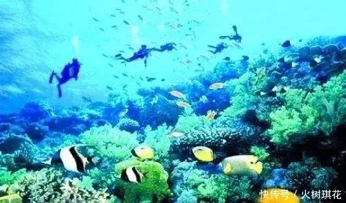 旅游 正文  海驴岛 海驴岛风景区,位于山东省荣成,距成山头2海里处,有