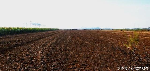 未来农村最值钱的不是土地,而是这些东西,别守