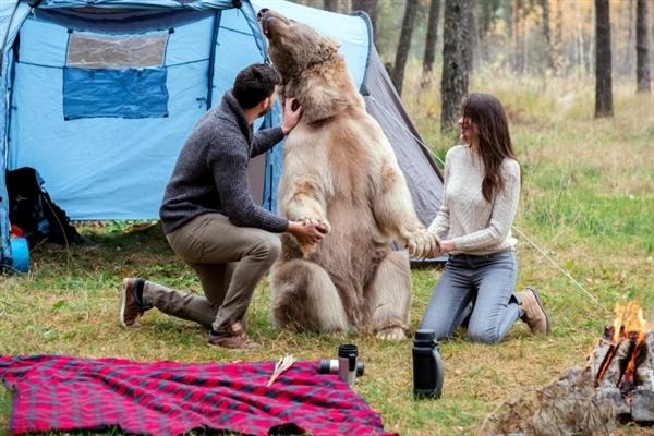 情侣在俄罗斯森林约会 大棕熊乱入抢镜 -  - 真光 的博客