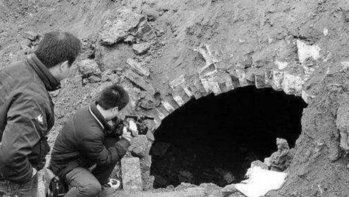 村民种树挖出大黑洞,专家进去大喊有鬼吓得赶跑,墓中惊现大蛇