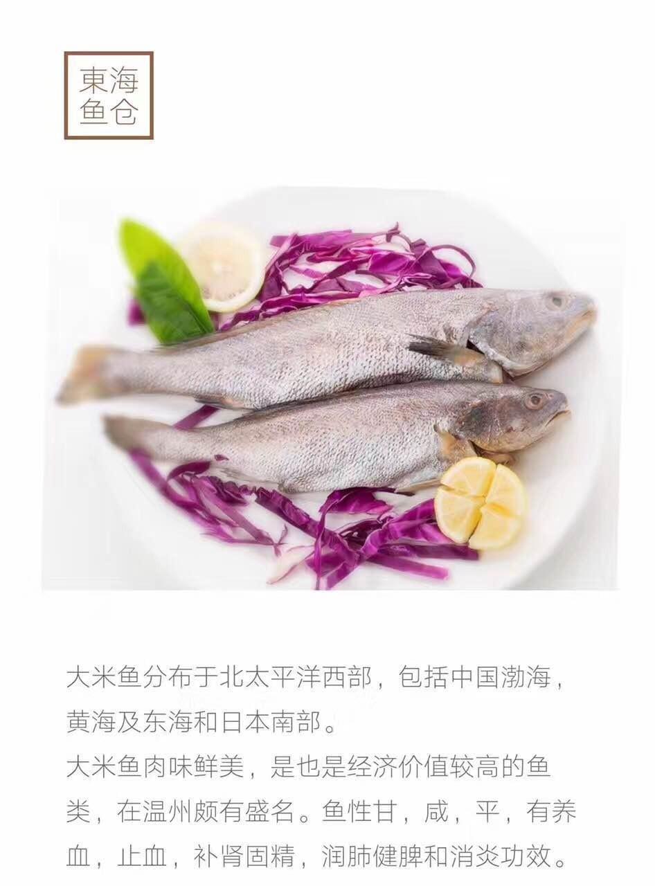 东海海鲜品种详细介绍