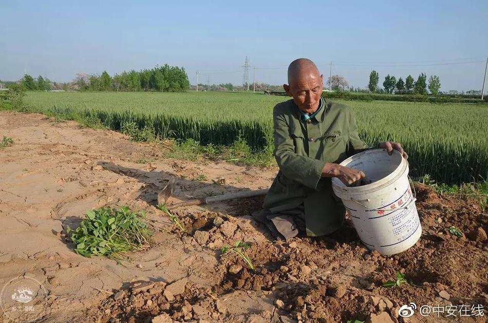 【转】北京时间        无腿老人靠双手行走40余年 演绎最励志人生 - 妙康居士 - 妙康居士~晴樵雪读的博客