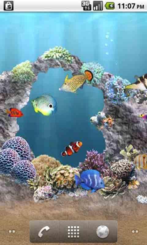 海底世界动态壁纸免费下载|海底世界动态壁纸手机版