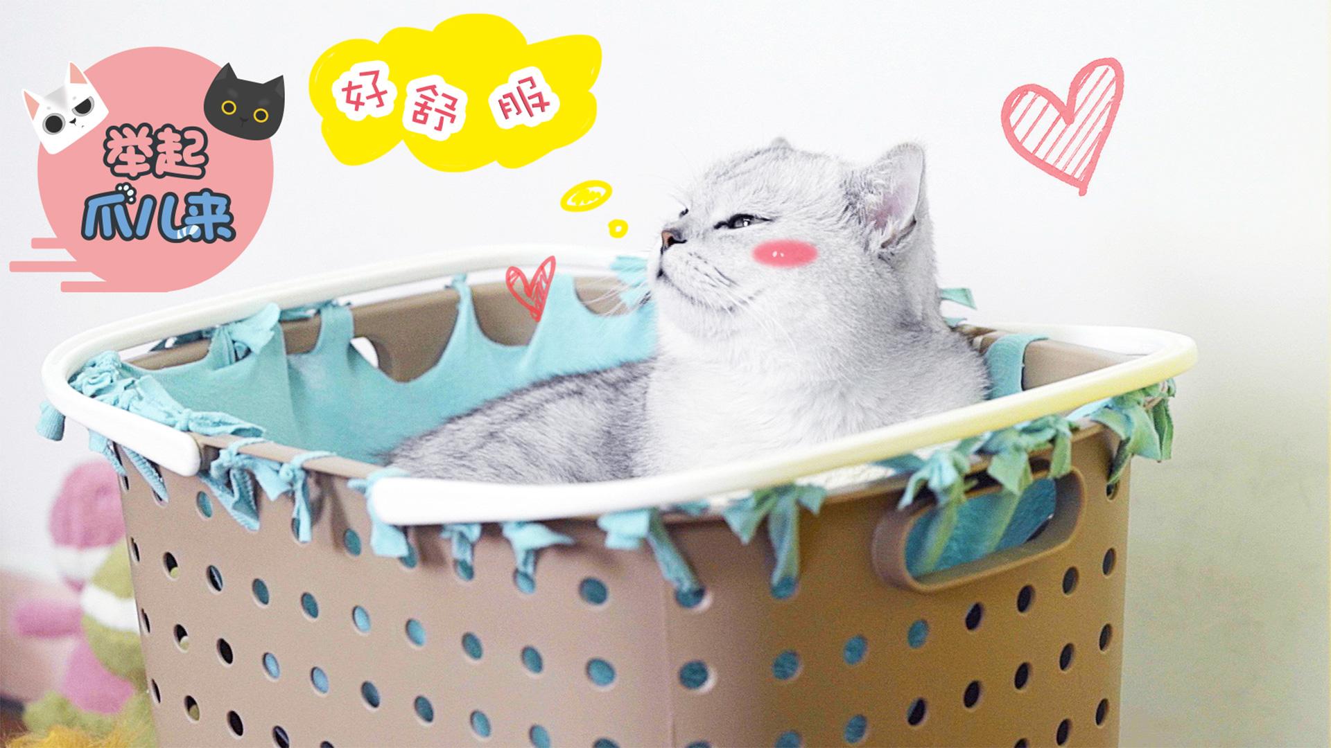 一招搞定猫咪收纳筐吊床