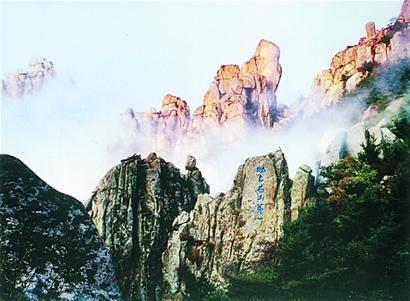 茶涧内曾发现过崂山地区非常罕见的野生茶树,春季玉兰花香满山涧,该