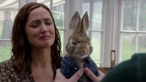 彼得兔:吃醋的兔子太难缠