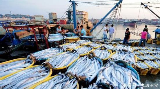 """中国海经济的""""顶梁柱"""",每年消耗上万吨,我们却只能吃""""死""""的"""