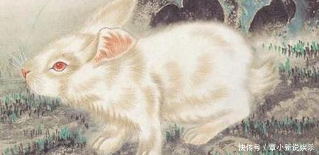 生肖兔,8月这几个地方尽量少去,太可怕!