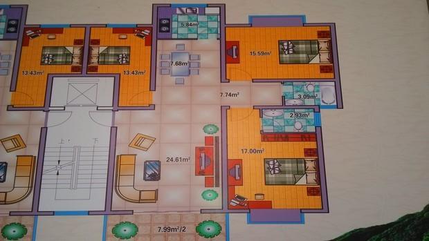 有房屋平面图求设计装修效果图