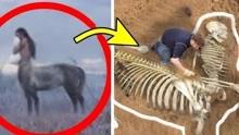 4个最神秘的考古发现:人马兽真的存在过?