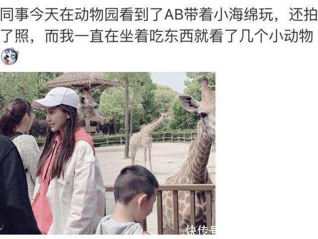 杨颖小海绵动物园遭粉丝围堵,一举止暴露人品,网友:活该你红!