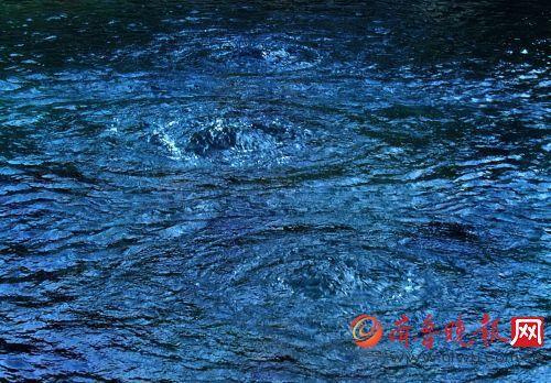 趵突泉水位暴涨重回28米大关今年持续喷涌不成问题最新新闻国内大事件