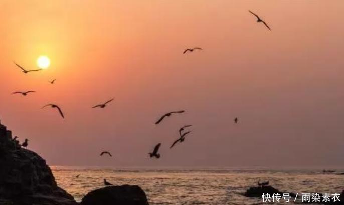 山东避暑城市:青岛最受欢迎
